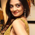 Nikitha Narayan Hairy Pussy