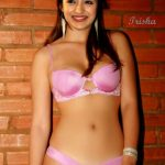 Trisha sexy navel naked in pink bikini bra and panties without clothes